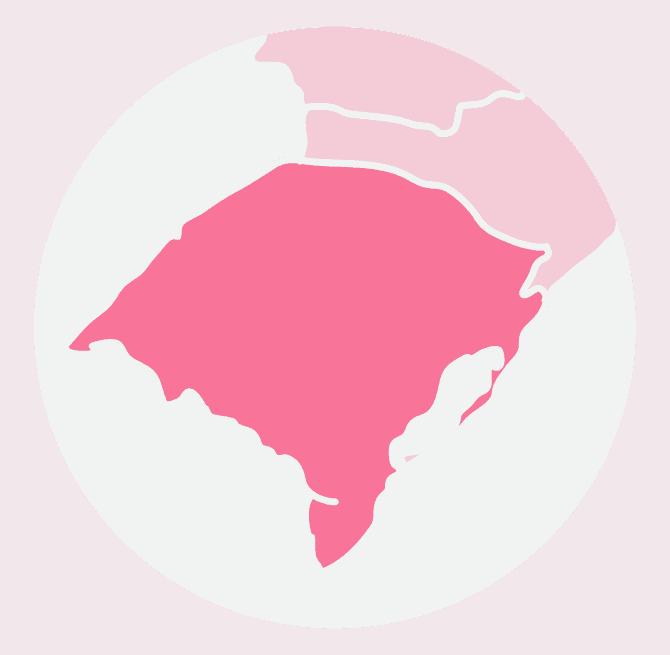Curso de Despigmentação e Colorimetria no Rio Grande do Sul
